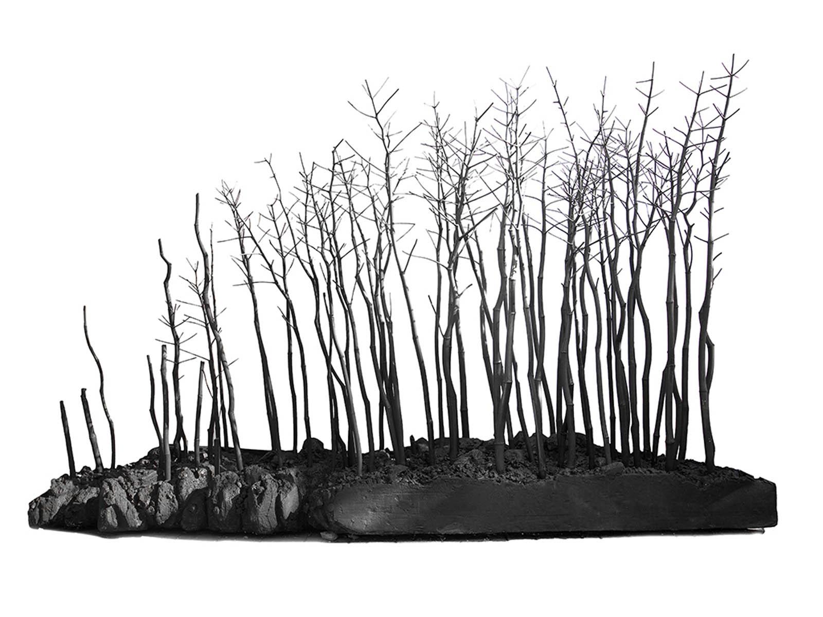 Terra in moto/Frammento di paesaggio