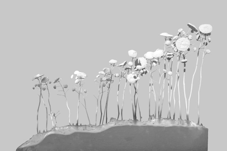 Terre in moto/paesaggio con semi